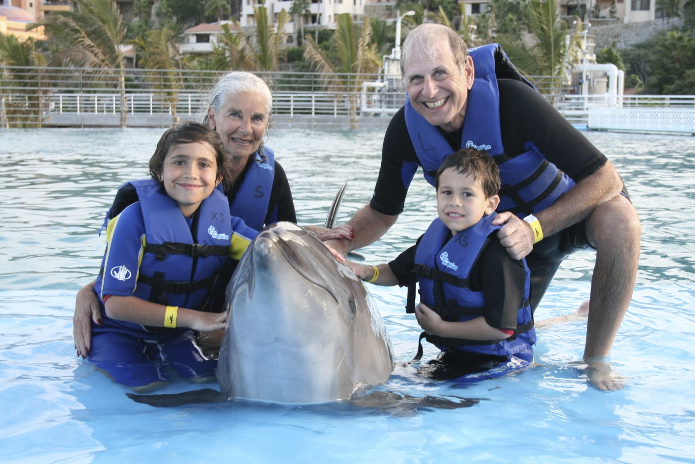 dolphin-encounter-los-cabos